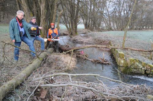 Bewässerungswehr Aschach Rodung 2016 2